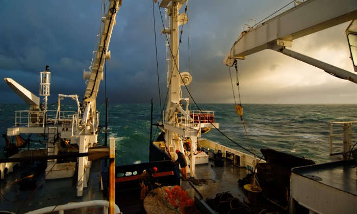 MERMAID Project Developing Multi-Use Offshore Platform