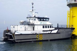 Image of Seacat Courageous