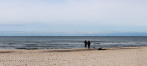 Installation Team  Needed for Danish Offshore Wind Farms