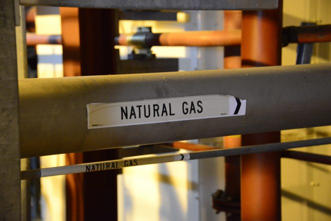 Arrow Energy's A$10 billion Surat gas project has been given the green light by the Queensland Government.