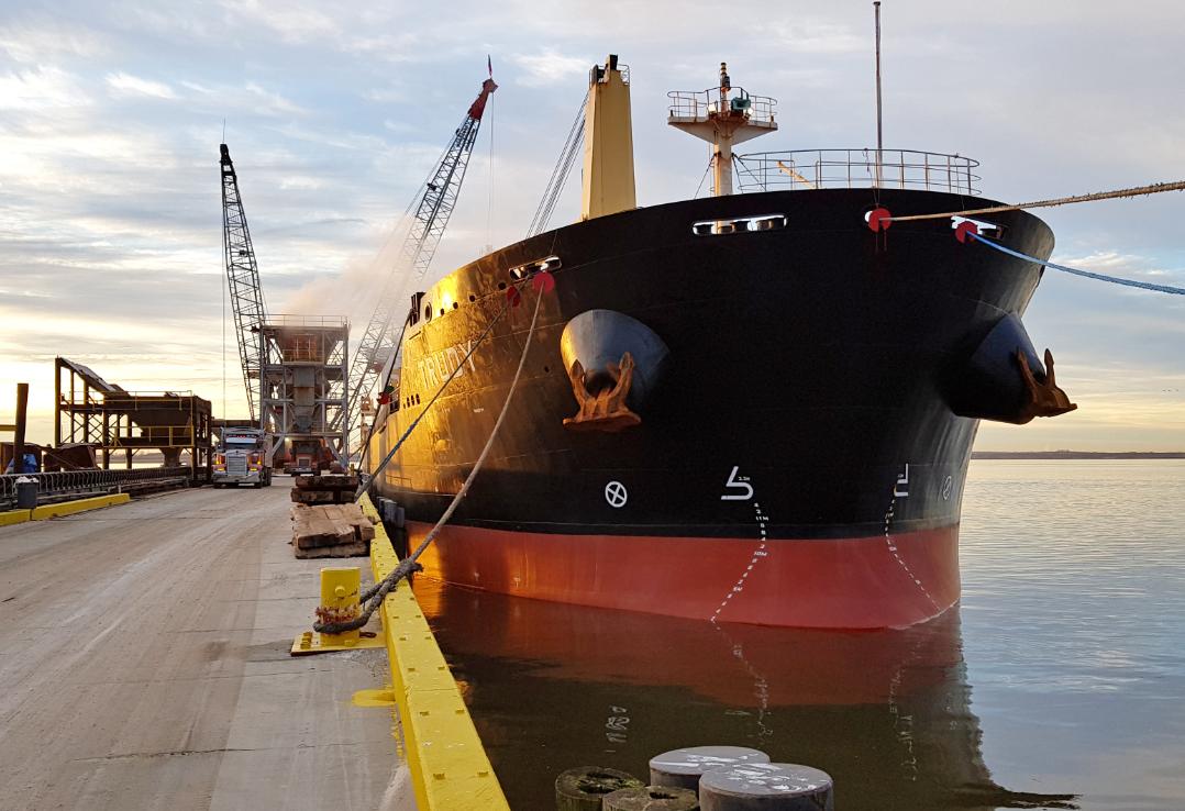 MV Trudy bulk carrier