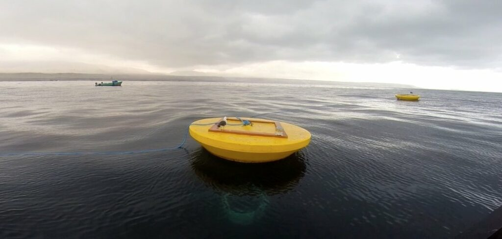 An image illustration showing Atmocean's scaled wave energy system (Courtesy of Atmocean)