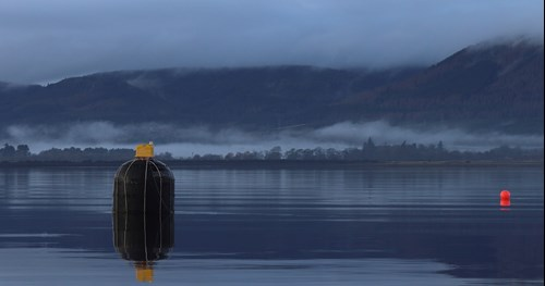 A photo of NetBuoy in the Cromarty Firth (Courtesy of Xavier Wadbled/Wave Energy Scotland)