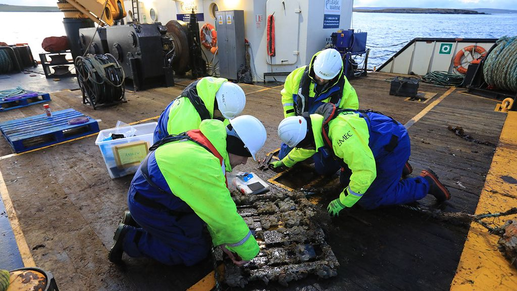Illustration/Researchers carrying out biofouling frame inspection (Courtesy of Colin Keldie/EMEC)