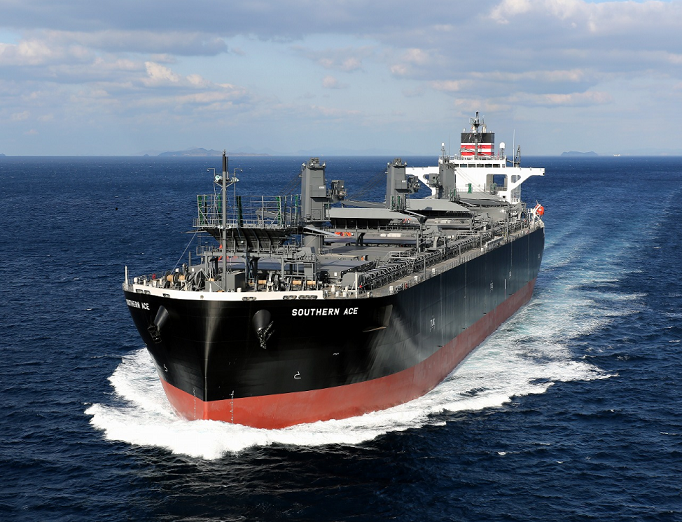 wood-chip carrier nyk