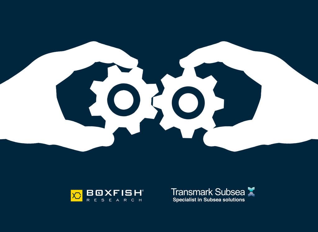 Illustration (Courtesy of Boxfish Research)