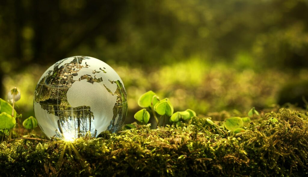 U.S. DoE to invest $75 mln in decarbonization tech