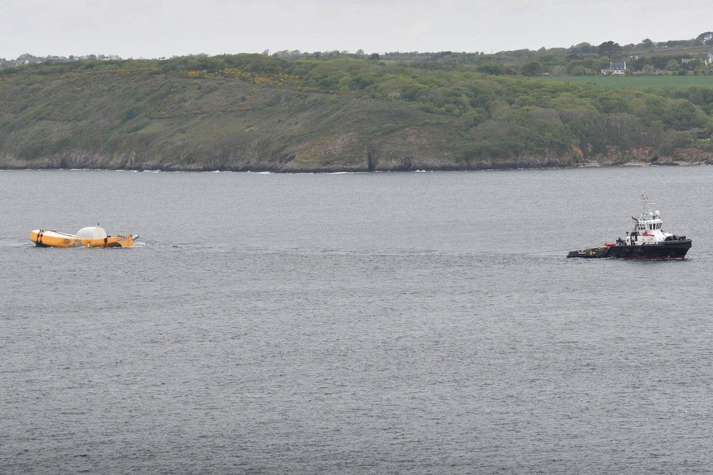 Photo showing Penguin en route to the Basque Country (Courtesy of Muller Dordrecht)