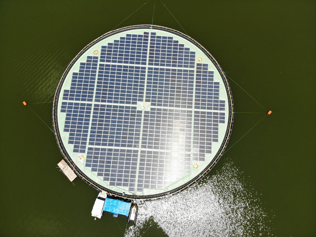Photo showing the 223kWp floating solar demonstrator on Magat Dam (Courtesy of Ocean Sun)