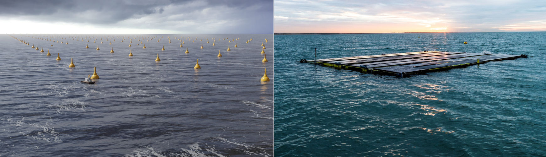 Illustration/CorPower Ocean's wave energy tech; and Oceans of Energy's floating solar unit (Courtesy of CorPower Ocean/Oceans of Energy)